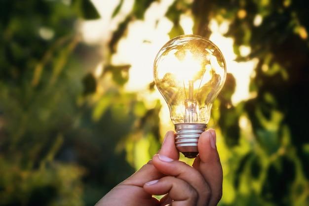 Conceito de energia de energia solar na natureza