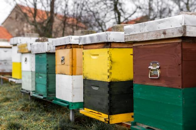 Conceito de estilo de vida campestre de colmeias de abelhas ao ar livre