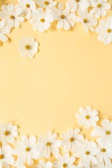Conceito de estilo mínimo. flores de camomila margarida branca em amarelo claro
