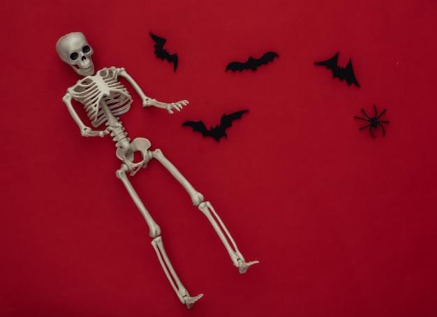 Conceito de férias de halloween. esqueleto e morcegos voadores, aranhas em um vermelho