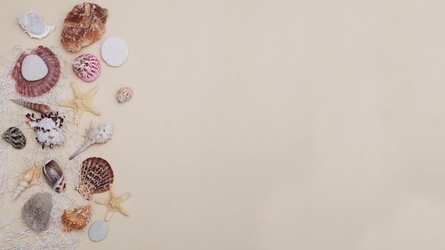 Conceito de férias de verão. mistura de conchas e pedras sobre o fundo marfim. copie o espaço.