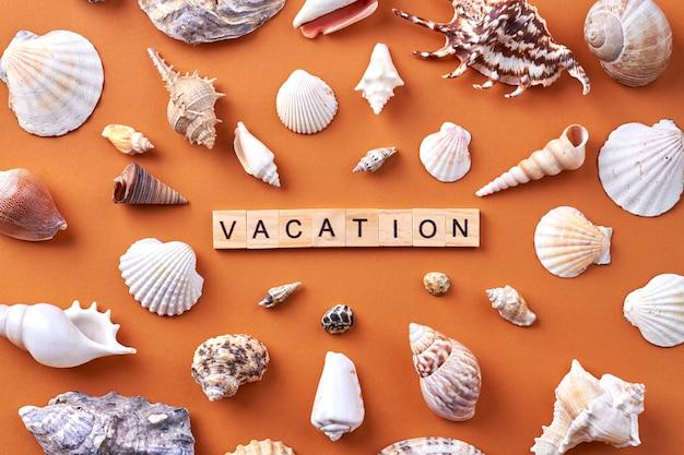 Conceito de férias de verão. muitas conchas em fundo laranja.