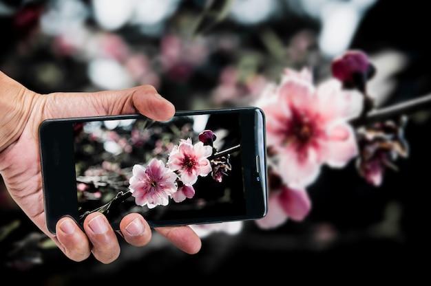 Conceito de fotografia móvel. mão segurando o smartphone e tirando foto