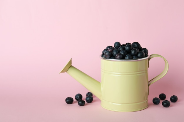 Conceito de frutas frescas com mirtilo em rosa