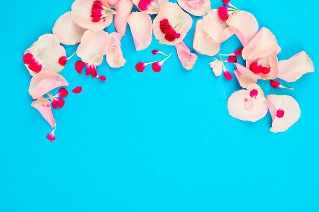 Conceito de fundo mínimo. composição de flores frescas isolada na mesa azul. vista do topo.