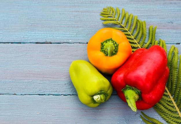 Conceito de grandes pimentões vermelhos, amarelos e verdes da colheita sazonal sobre um fundo azul de madeira em um estilo rústico, folha de samambaia, copie o espaço com lugar para o seu texto.