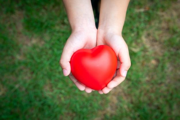 Conceito de ícone médico no coração das mãos da família