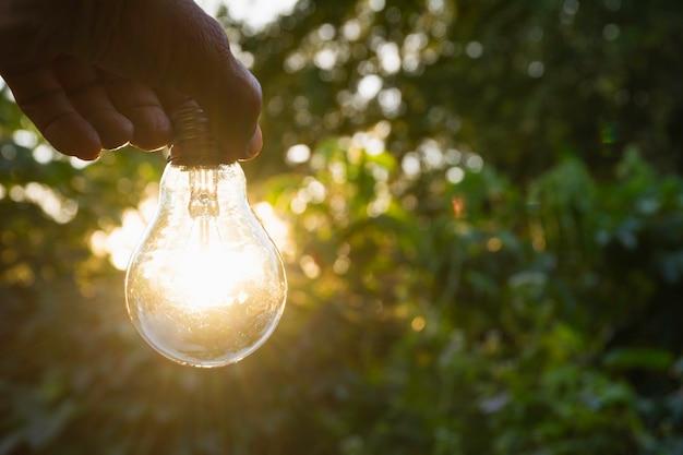 Conceito de inovação e energia da mão segura uma lâmpada