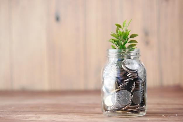 Conceito de investimento com plano crescendo por meio de moedas