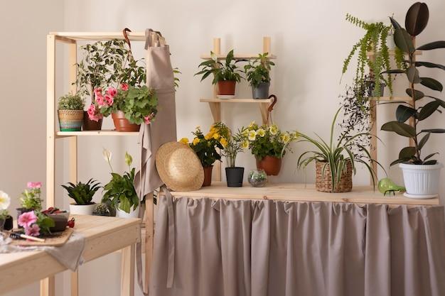 Conceito de jardinagem com plantas saudáveis