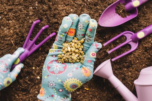 Conceito de jardinagem com sementes na mão