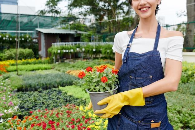 Conceito de jardinagem e horticultura