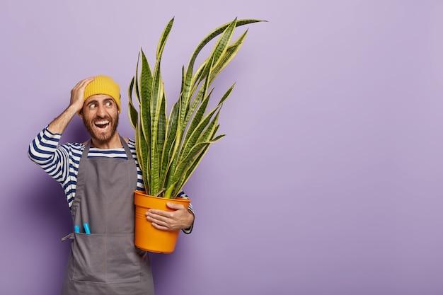 Conceito de jardinagem em casa. o florista masculino positivo enfrenta problemas de muita luz solar direta