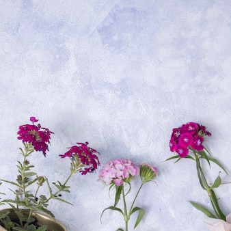 Conceito de jardinagem plana leigo com copyspace