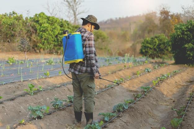 Conceito de jardinagem: um jovem agricultor pulverizando um pesticida químico para prevenir as plantações das pragas.