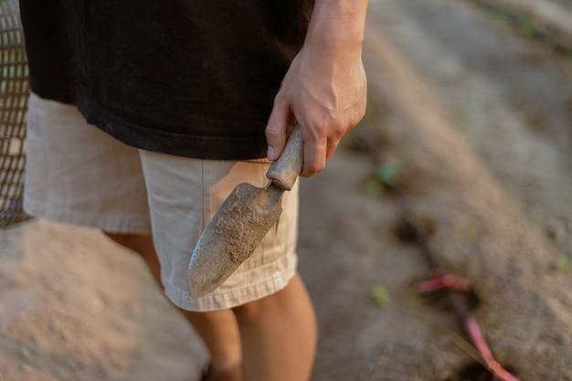 Conceito de jardinagem: um jovem agricultor removendo a terra ao redor das plantas para permitir que o oxigênio atravesse as raízes facilmente.