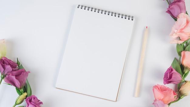 Conceito de lindas flores com notebook moderno