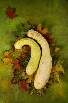 Conceito de natureza outono. abóboras com folhas em um fundo verde