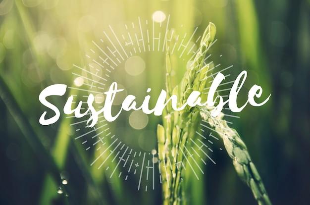 Conceito de natureza sustentável de agricultura alternativa