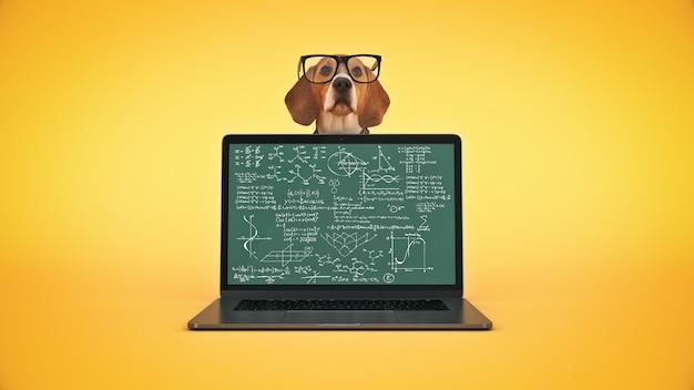 Conceito de negócio cão de estimação usando laptop renderização em 3d
