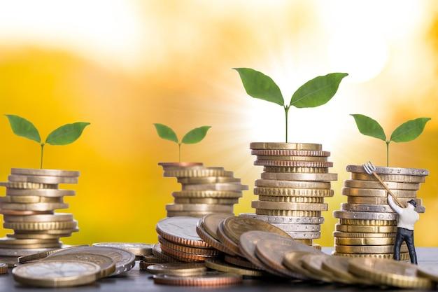 Conceito de negócio de crescimento de dinheiro por preparar sua moeda antes do investimento.