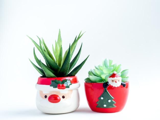Conceito de objeto de natal, plantas suculentas verdes em lindos vasos de cerâmica do papai noel