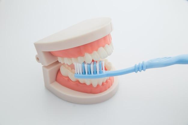Conceito de odontologia, medicina, equipamentos médicos e estomatologia.