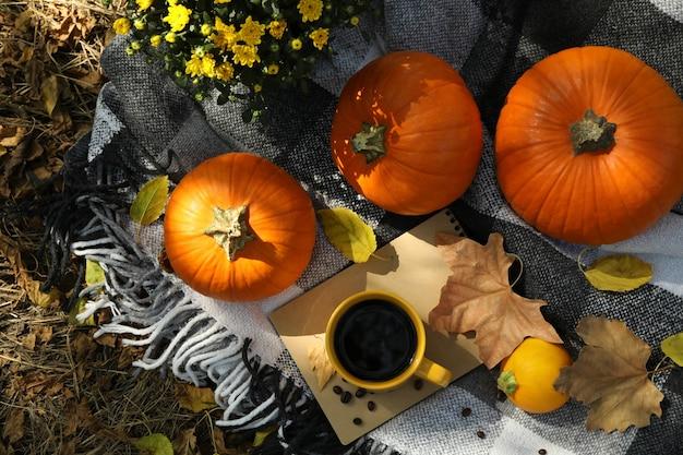 Conceito de outono aconchegante com abóboras ao ar livre