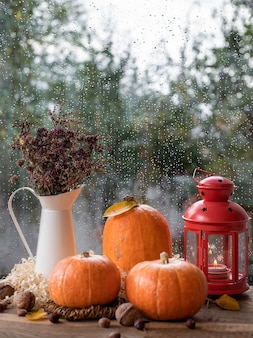 Conceito de outono com abóboras, um vaso com flores secas e uma lanterna mística
