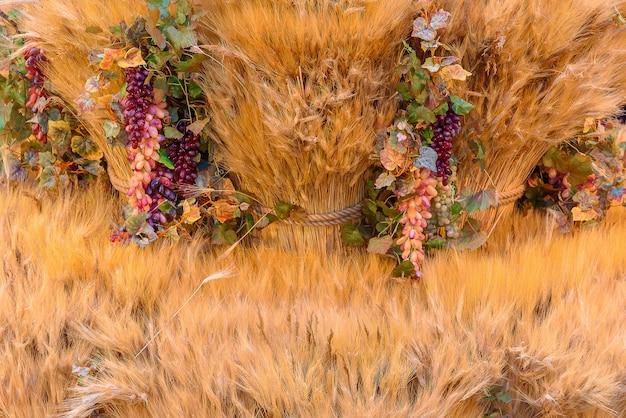 Conceito de outono com frutas e vegetais da estação. fundo de outono de vegetais sazonais no feno.
