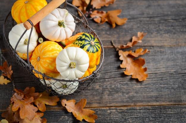 Conceito de outono com mini abóboras em uma cesta em uma mesa de madeira rústica