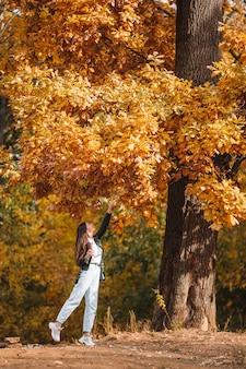 Conceito de outono - mulher bonita no parque outono sob folhagem de outono