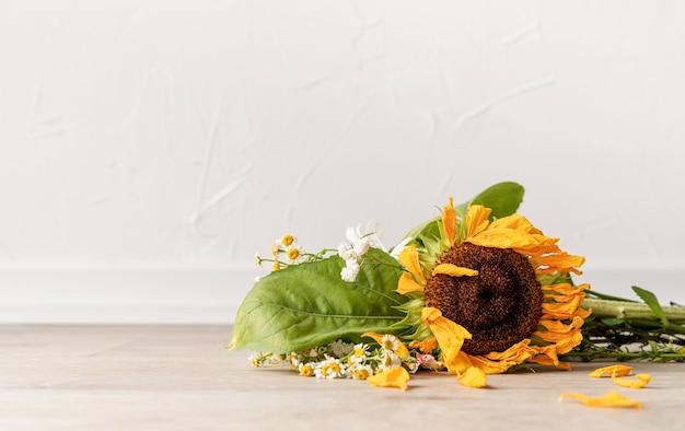 Conceito de outono. um buquê de flores murchas e um girassol no chão