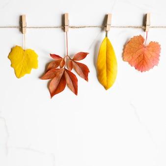 Conceito de outono. vista superior das folhas de outono
