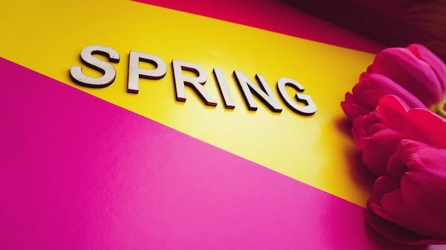 Conceito de primavera. buquê de tulipas em fundo colorido. dia das mães ou tema festivo de 8 de março. close-up com texto primavera. banner de venda de primavera