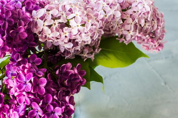 Conceito de primavera com flores lilás