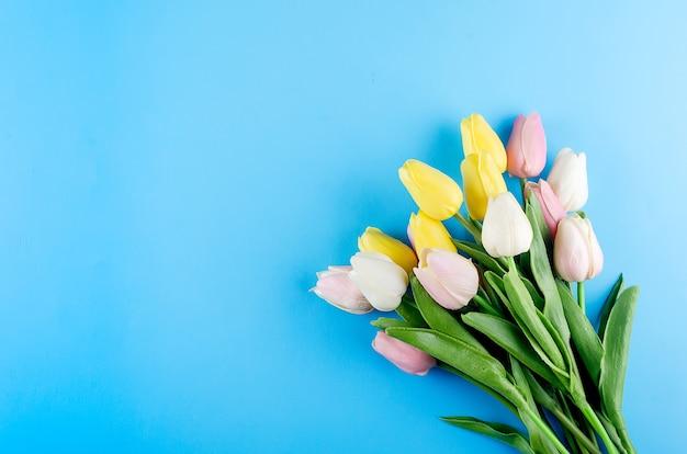 Conceito de primavera ou férias, um buquê de tulipas sobre fundo azul.