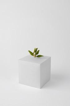 Conceito de sustentabilidade com formas geométricas e plantas em crescimento