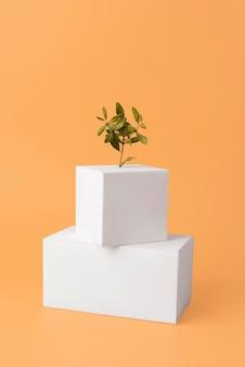 Conceito de sustentabilidade com plantas crescendo a partir de formas geométricas em branco