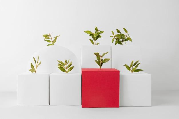 Conceito de sustentabilidade com plantas crescendo a partir de formas geométricas