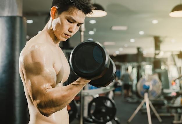 Conceito de treino masculino de musculação, homens asiáticos levantando halteres para construir músculos no ginásio de fitness.