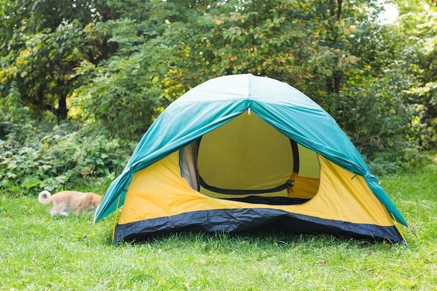 Conceito de turismo e aventuras - paisagem da natureza barraca de acampamento amarela com árvore na grama verde