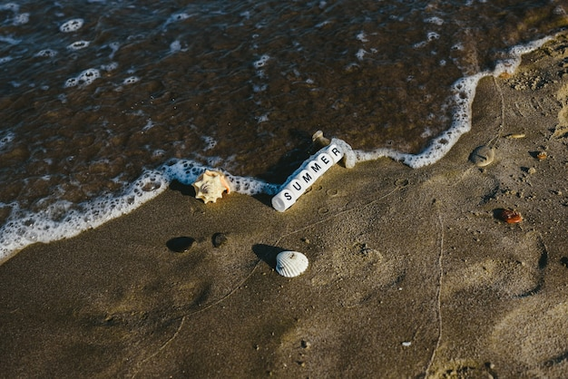 Conceito de verão feito com dados com letras na areia molhada de uma praia e motivos marinhos