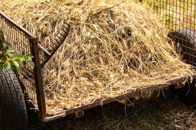 Conceito de vida de fazenda com feno