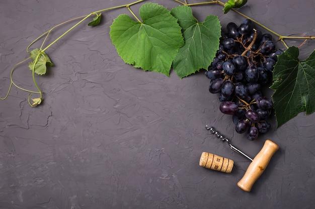 Conceito de vinificação da colheita de uva outono fresco