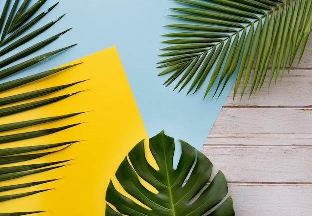 Conceito do abrandamento das férias das férias de verão da praia