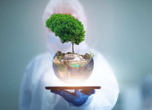Conceito do dia mundial do meio ambiente, dia da terra, terra e árvore nas mãos