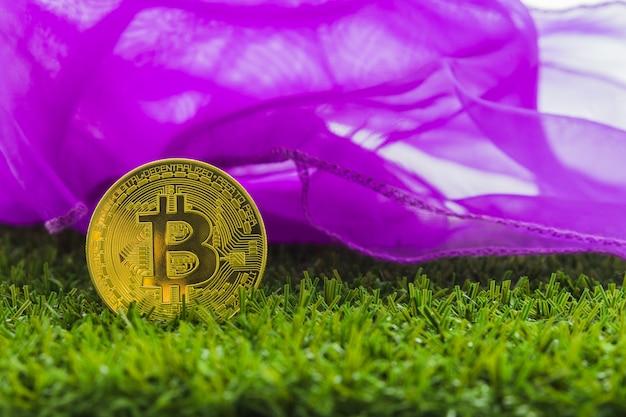 Conceito do internet do negócio da tecnologia da moeda da moeda btc do bocado de cryptocurrency bitcoin digital.