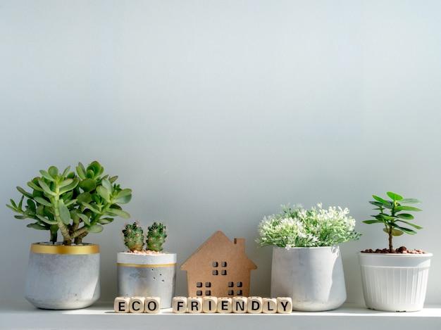Conceito ecológico. casa de madeira e palavras em um cubo de madeira com plantas verdes, cactos em vasos em branco