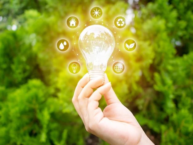 Conceito economizar energia eficiência. mão, segurando, bulbo leve, com, eco, ícones